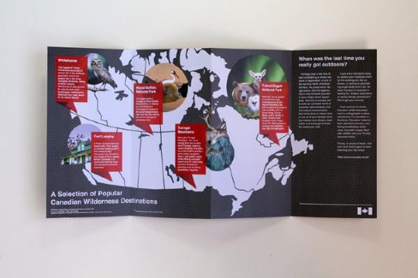 creative-brochure-designs