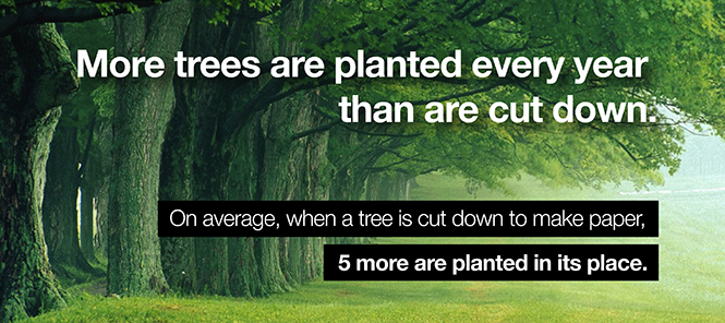 Trees are a renewable resource